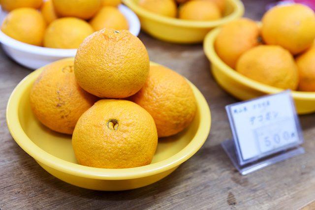 冬の柑橘類